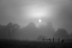 Barn in Fog at Dawn (shutterclick3x) Tags: blackandwhite bw fog barn sunrise fence dawn backroads frankloose