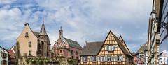 Eguisheim - Place du chteau St-Lon (Julien Ruff Photos) Tags: france alsace chteau stork storks elsass colombages cigogne alsacien cigognes eguisheim alsacienne stlon julienruffphotos
