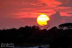 Beach Ball (Lovely Lizards Photography) Tags: sunset unitedstates alabama gulfshores gulfstatepark lovelylizardsphotography