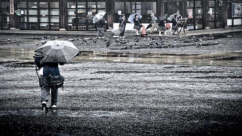mưa bão