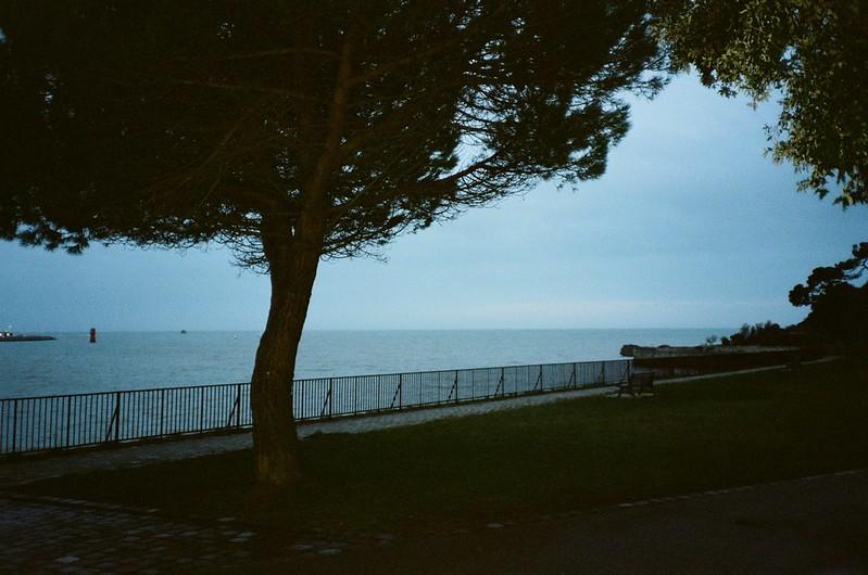 Flash Ocean.