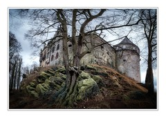 Bad Bentheim Castle (MartinFechtner-Photography) Tags: deutschland germany grafschaftbentheim bentheim bad nordhorn castle burg tree baum ald old high hill rocks rock felsen alt fujifilm fujifilmxt2 xt2 fujinon1024mm panorama