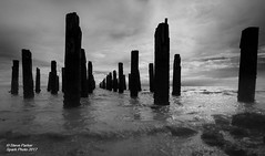 The Old Soldiers (Spark-Photo) Tags: wharf leaden monochrome thames bw storm skies blackwhite