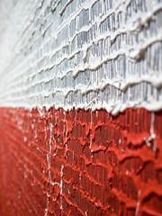 Postmatejkizm (Kwarek) Tags: red white czerwony biały farba