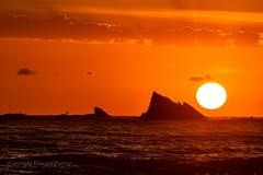 The fisherman, the surfer & the rising sun (Howard Ferrier) Tags: australia clouds contrejour currumbin currumbinrock dawn fisherman goldcoast ocean oceania orangered pacificocean queensland seq silhouette sun sunrise themes