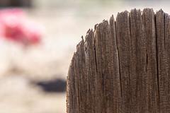 The Cutting Edge (jah32) Tags: wood weathered weatheredwood cemeteries cemetery casagrande arizona bokeh spring
