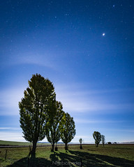 Just past midnight (nightscapades) Tags: astronomy astrophotography farm fields goulburn grass jupiter moon moonlight night nightscapes paddocks rural silhouettes sky spica stars trees