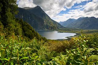 Lago Negro - Parque Nacional Pumalin (Patagonia Chile)