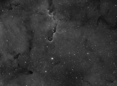 ic1396 ha 1st draft (__Aenima__) Tags: astroimage astrophotography astro astronomy astroimaging backyard baader blackandwhite cygnus capture constellation cluster calibration deepsky dso deep dark digital doorstep ed80 emission equatorial mount star stars space telescope astrometrydotnet:id=nova2038869 astrometrydotnet:status=solved