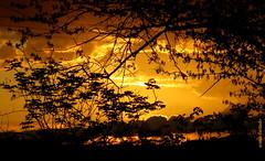 Quarta-sunset (sonia furtado) Tags: quartasunset sunset pds soniafurtado contraluz nanaturezainnature
