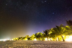 Shooting Star (icemanphotos) Tags: skyscape night stars milkyway palm trees relaxing