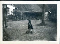 Family Album (Keith Pharo) Tags: sunny vale devon social history holiday uk great britain photography countryside family michael walter westwood park forest hill travel tourism black white photographs ilford films 1953 1955