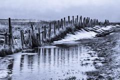HFF - enjoy your weekend! (hey ~ it's me lea) Tags: hff fence reflections bw alberta rural fenceline