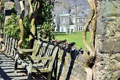 Sunny Bench (KaDeWeGirl) Tags: newyorkcity bronx riverdale wavehill stone fence pergola sun light shadows bench botanical garden