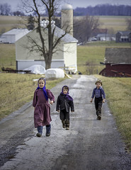 Amish Children (crabsandbeer (Kevin Moore)) Tags: amish childhood farm kids mennonite pa pennsylvania people rural spring fighand pennsylvaniadutch candid