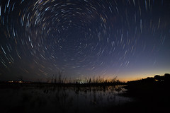 Star Trails (Rene52) Tags: stas trails startrails night nightphotography astrophotography wintonwetlands wetlands