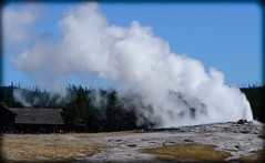 _DSC8318 (DianeBerky19) Tags: 2016 jacksonholewyoming summitnatureworkshop wy nikon yellowstonenationalpark geyser oldfaithful