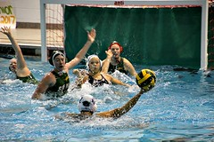 LOOKING TO SHOOT (MIKECNY) Tags: waterpolo pool siena villanova women sport ball net ncaa
