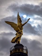Berlin Victory Column (Biolchini) Tags: germany berlin victory column strack monument alemanha berlim vitória