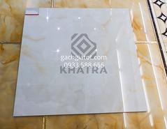 Gạch vi tinh 8B018 (80x80)