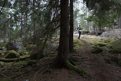 Åda Wild Boar Trail 2017-114 (Mauritzson) Tags: åda wild boar trail ådawildboartrail ådawildboar trailrunning trailrun running runners löpning trosa vagnhärad sweden spring