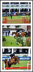 Equipe de France (vincengraphe) Tags: cheval cavalier csio 450d 55250is csiolabaule2013