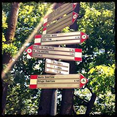 Where are we going? (Rebel Yell 82nd) Tags: italy italia mtb lombardia lagodicomo brunate lariano mountainbik allmountain boletto