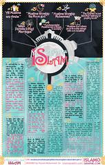 Misconceptions about Islam (orbitislam) Tags: charity muslim islam prayer religion ramadan prophet muhammad quran infographics salah hajj koran zakat hadith sunnah