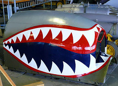 "Curtiss P-40 Warhawk 22 (30) • <a style=""font-size:0.8em;"" href=""http://www.flickr.com/photos/81723459@N04/9471589165/"" target=""_blank"">View on Flickr</a>"
