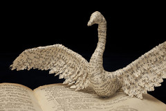 Right Swan (From Within a Book...) Tags: sculpture bird art water birds paper paperart word reading book design words 3d swan text beak feathers craft swans page sculptor swansong emmataylor booksculpture fromwithinabook