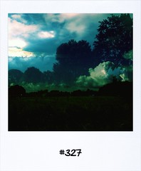 "#DailyPolaroid of 12-8-13 #327 • <a style=""font-size:0.8em;"" href=""http://www.flickr.com/photos/47939785@N05/9539908154/"" target=""_blank"">View on Flickr</a>"
