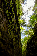the years below still lie (*TLM*) Tags: rock landscape moss gorge flume