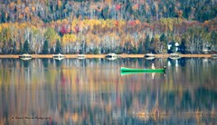En mode pause \ Taking a long break (deplour) Tags: autumn automne river boat fishing rivière bateau pêche restigouche