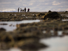 Low Tide #21 (HurrySlowly) Tags: boy sunset people woman cloud man water coral landscape bucket fishing wave lagoon lowtide cookislands rarotonga reef hunt oceania arorangi