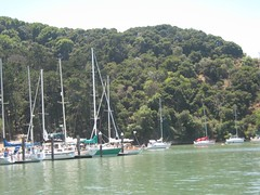 """Angel Island • <a style=""""font-size:0.8em;"""" href=""""http://www.flickr.com/photos/109120354@N07/11042893856/"""" target=""""_blank"""">View on Flickr</a>"""
