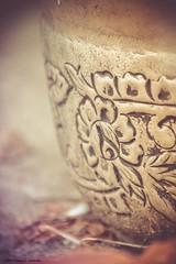 (LauraJSwindle) Tags: stilllife usa ny random objects pot vase wantagh nikond3100