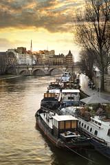 Pniches sur la Seine - Paris France (www.antoniogaudenciophoto.com) Tags: paris france seine pont bateau pniche leverdesoleil fleuve pontdesarts ledelacit lesaintlouis pondneuf