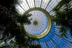 "Buffalo and Erie County Botanic Garden-Palm Dome Top • <a style=""font-size:0.8em;"" href=""http://www.flickr.com/photos/59137086@N08/12039037503/"" target=""_blank"">View on Flickr</a>"