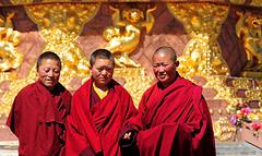 Three young nuns in front of the big statue of Padmasambhava, Tibet 2013 (reurinkjan) Tags: dzogchen 2013 tsokpa yachengar བོད་ལྗོངས། ©janreurink tibetanplateauབོད་མཐོ་སྒང་bötogang tibetབོད buddhistསངས་རྒྱས་ཆོས་ལུགས་པ དགོན་པ་ nunneryཨ་ནི་དགོན་པ་anidgonpa monkགྲྭ་བ།grwaba buddhismསངས་རྒྱས་ཆོས་ལུགས།sangsrgyaschoslugs yarchengar greatertibetབོད་ཆེན་པོböchenpo tibetannationalitytibetansབོད་རིགས།bodrigs ཆུ་ nunཇོ་མོ།ani khamཁམས།easterntibet nyingmaredhatsectརྙིང་མrnyingma ༢༠༡༣ khamཁམས་བོད khamsbodkhamwö pelyülདཔལ་ཡུལ།county nyingmapahermitage yarchengarཡར་ཆེན་སྒར་ lamaachukrinpoche yellegar rinchenlingpa yachengönཡ་ཆེན་དགོན། yachengarཡ་ཆེན་དཀར་། stupaམཆོད་རྟེན༏mchodrtenchorten yarchengön dzinchu ཛིན་ tibetannationtibetanpeopleབོད་ཀྱི་མི་བརྒྱུད bökyimigyü sisterhoodཨ་ནིའི་ཚོགས་པani yarchengonpaཡར་ཆེན་