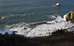 Breaking Wave (San Francisco Gal) Tags: ocean nature landscape pacific wave shore