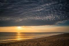 peeking sun (Jen MacNeill) Tags: ocean morning winter sunset sun beach nature clouds sunrise nc sand cloudy seagull gull peaceful northcarolina atlantic shore beaches outerbanks jennifermacneill jennifermacneillphotography