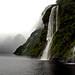 Doubtful Sound  Fiordland NZ