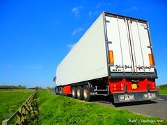Irish Scania (KCZ 33) Tags: ireland irish adams gray 164 v8 scania 143 r500 topline sawyers r560 mcgeown r580 r730