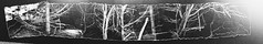 """AS Photography final piece - """"Fear"""" (Sophie Barlow) Tags: blackandwhite bw panorama art texture collage dark photography death scary mine pattern branches board fear flash panoramic negativespace negative final montage a3 a1 scared photographicart scare fearful exam aslevel alevelphotography photographyalevel"""