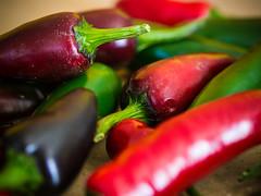 P7015337 (zullo_stefano) Tags: red food orange black macro green colors pepper zuiko hotpepper jalapeño blackhungarian zuiko50mmmacro olympuse5