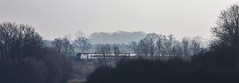 Crossing the Sence (Peter Leigh50) Tags: east midland trains leicestershire emt mist high speed train hst wistow river sence trees