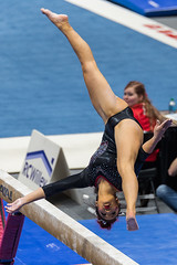 Utah vs Stanford-2017-728 (fascination30) Tags: utah utes gymnastics stanford nikond750 tamron70200