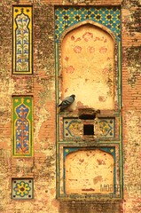 Interesting pattern formations in Lahore fort (Mobeen_Ansari) Tags: old building bird fort decay ruin mosque punjab lahore masjid mughal badshahi
