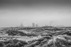 IMG_1961-22 (TheKenski (contrastimages.co.uk)) Tags: sea dog beach boats coast seaside sand waves canine shore northsea bordercollie northeast sanddunes windfarm redcar seafret southgare