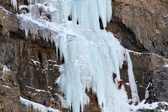 Ice Climbers (Utah Images - Douglas Pulsipher) Tags: travel winter mountain mountains cold tourism ice sports lines sport vertical danger climb frozen dangerous team risk freezing gear tourist cliffs safety adventure equipment climbing alpine experience trust destination brave recreation ropes icy fitness frigid icicles tethered bridalveilfalls fit peril confident bold climbers organized ascent perilous helmets teamwork organize specialized skill daring ledges belay risky recreational ascending experienced skilled mountainous depending provocanyon wasatchmountains depend selfconfidence iceclimbers adventuresports belayed
